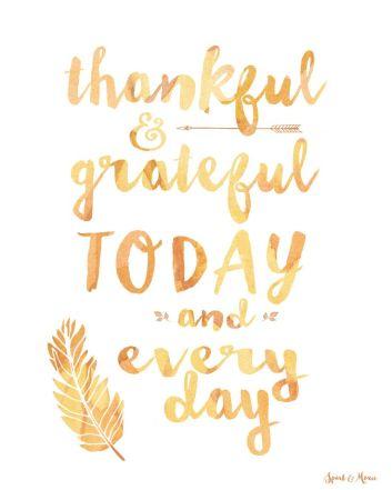 a5ce6ec16a6222b7e2d8ac10386bccfe--thanksgiving-quotes-happy-thanksgiving